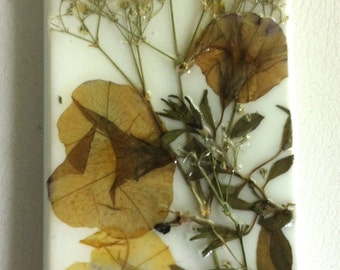 Dried Pressed Flower iPhone 4 Case