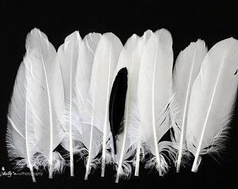 Feather Photography, White Feathers Print, One Black Feather, Black and White Feathers, Black and White Photography, Feather Art Print