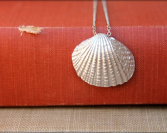 Clam Shell Necklace, Available in Silver or Gold