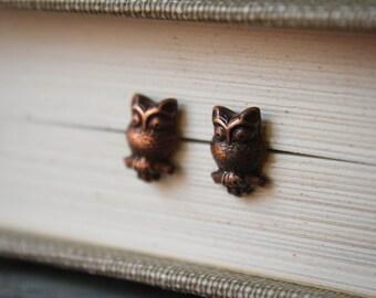 Copper Owl Earring Studs