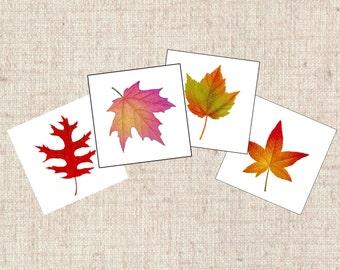 Autumn Wish Tags, Botanical wish tags, Leaf Wish Tags, Wedding Wish Tags, Guest Book alternative, Fall Wedding Wish Cards, Autumn Tags  A109