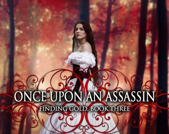 Once Upon an Assassin Paperback