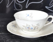 Vintage porcelain teacups romantic blue flowers, set of five