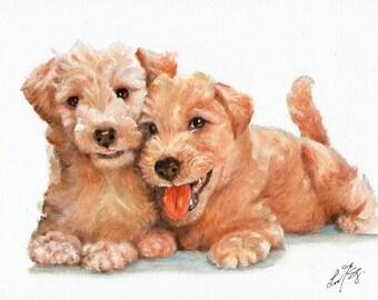 New Original Oil DOG Portrait Painting LAKELAND TERRIER Art Puppy Artist Signed Artwork