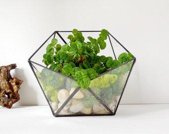 Glass Terrarium, clear glass planter geometric 3D shape, icosahedron. MADE TO ORDER