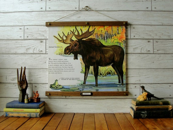 Mighty Moose Chart / Vintage Reproduction / Canvas Print / Oak Wood Hanger and Brass Hardware / Organic Milk Paint & Wax Finish
