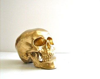 Skull Head in GOLD: Mr. Smiley / faux human skull / fake skull / office / home school decor / cranium / skeletal system / bones / Halloween