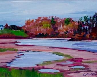 Maine Landscape Wolfe's Neck 3