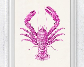 Lobster print - Wall decorOcean life art fuchsia Lobster n03- sea life print- Sale buy 4 get 5- Marine sea life illustration A4 print SPA029