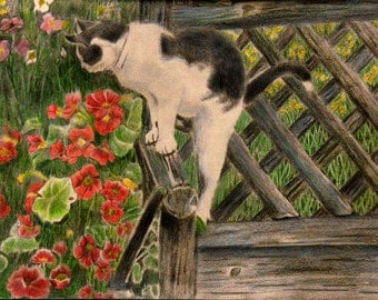 "Print of Colored Pencil Drawing:  ""Cat in a Summer Garden""."