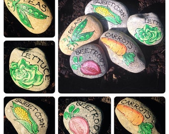 Arty-Rocks Vegetable Markers