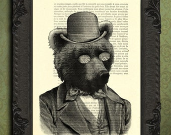 bear in clothes brown bear portrait bear art