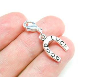 Silver Horseshoe Good Luck Charm. Cute Lucky Charm. SCC353