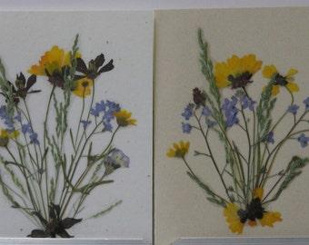Pressed Flower Cards.  Real Montana Grown Flowers