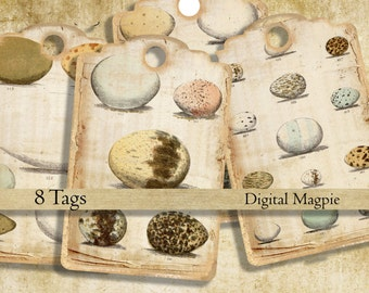 vintage bird eggs printable hang tags digital download tattered torn grungy gift tags instant download scrapbook journal ephemera