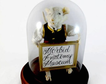 Taxidermy Dapper Mouse Morbid Anatomy Museum or Customized Sign