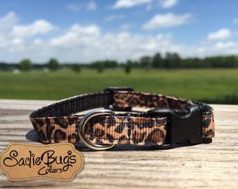 Leopard cat collar