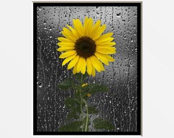 Sunflower Wall Art, Decorative Bathroom Decor, Yellow Wall Pictures, Yellow  Sunflower Bedroom Bath Part 80