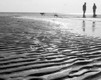 Dog beach, Fairfield, CT, black and white, texture, high key, nature, sea landscape
