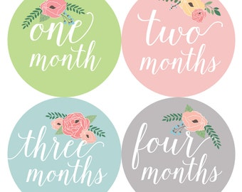 Baby Monthly Stickers, Baby Girl Monthly Stickers - Baby Girl, Girl, Baby Shower Gift