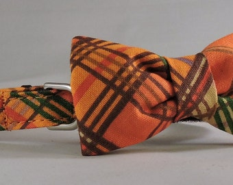 Cat Collar or Kitten Collar with Flower or Bow Tie  - Bountiful Harvest