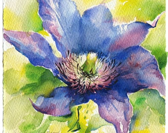 Clematis watercolor painting - flower watercolor original, paper. Flowers print, watercolor print