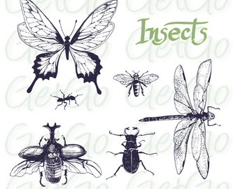 Insect Clipart, Silhouette, Vector, Insects Clip Art, Cards, Crafts, Scrapbooks, Bugs Butterfly Instant Download, Digital Stamp