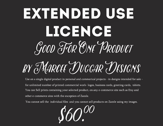 Extended Use Licence for Digital Product