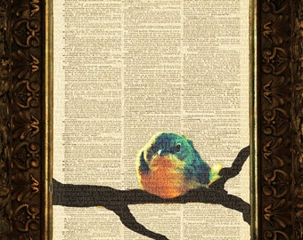 Mr Finch in Blue on Antique Dictionary Page, art print, Wall Decor, Wall Art Mixed Media Collage