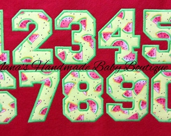 "3.5"" Freshman Applique NUMBERS SET - Sports Jersey Numbers 4 x 4 Hoop - Digital Embroidery Design"