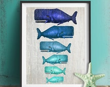 Whale Family Blue on Grey : whale poster Nautical Print Art Illustration whale gift whale art Digital Print Wall Art Wall Décor Wall Hanging