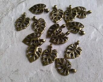 14 Antique Brass Charm Pendant Leaves