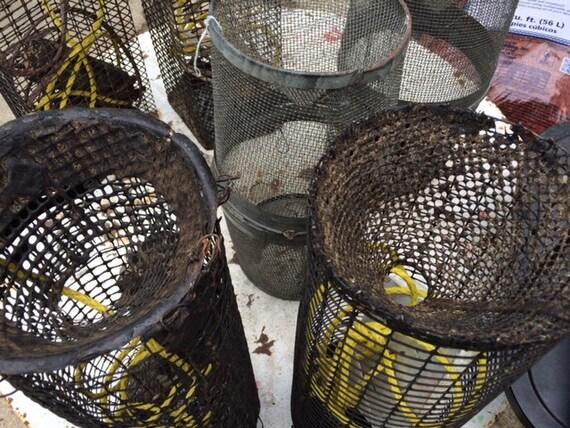 Vintage wire mesh shrimp crawfish fishing by