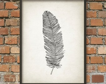 Feather Wall Art Poster