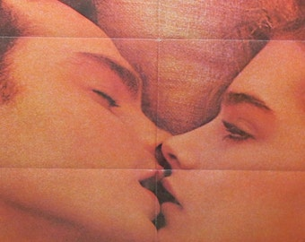 Vintage Brooke Shields Endless Love Movie Poster Trailor Theatrical Release Lobby Poster Young Brooke Shields 1981