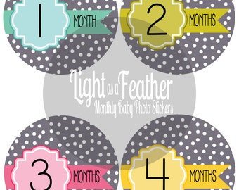 Baby Monthly Sticker Girl, Month by Month Bodysuit Baby Stickers, Milestone Stickers - Months 1-12