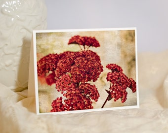 Floral Greeting Card - Dried Flower Bouquet - Nature Photo Note Card - Red Flower Photography - Botanical Print - Blank or Personalised Card