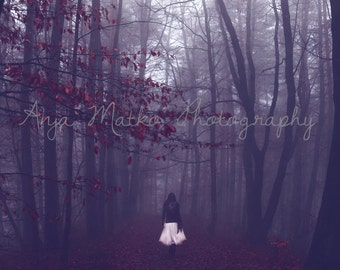 Conceptual, Fine Art Print, On The Path To Nowhere