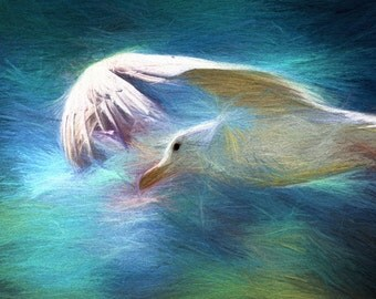 Impressionist Art, Seagull Print, Nature Art, Impressionist Painting, Modern Art, Large Wall Art, Sea Gull Art, Abstract Art, Bird Prints