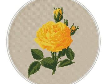 Rose cross stitch pattern, flower cross stitch, cross stitch PDF, pillow pattern, cushion pattern, Instant Download, Free shipping, MCS064-2