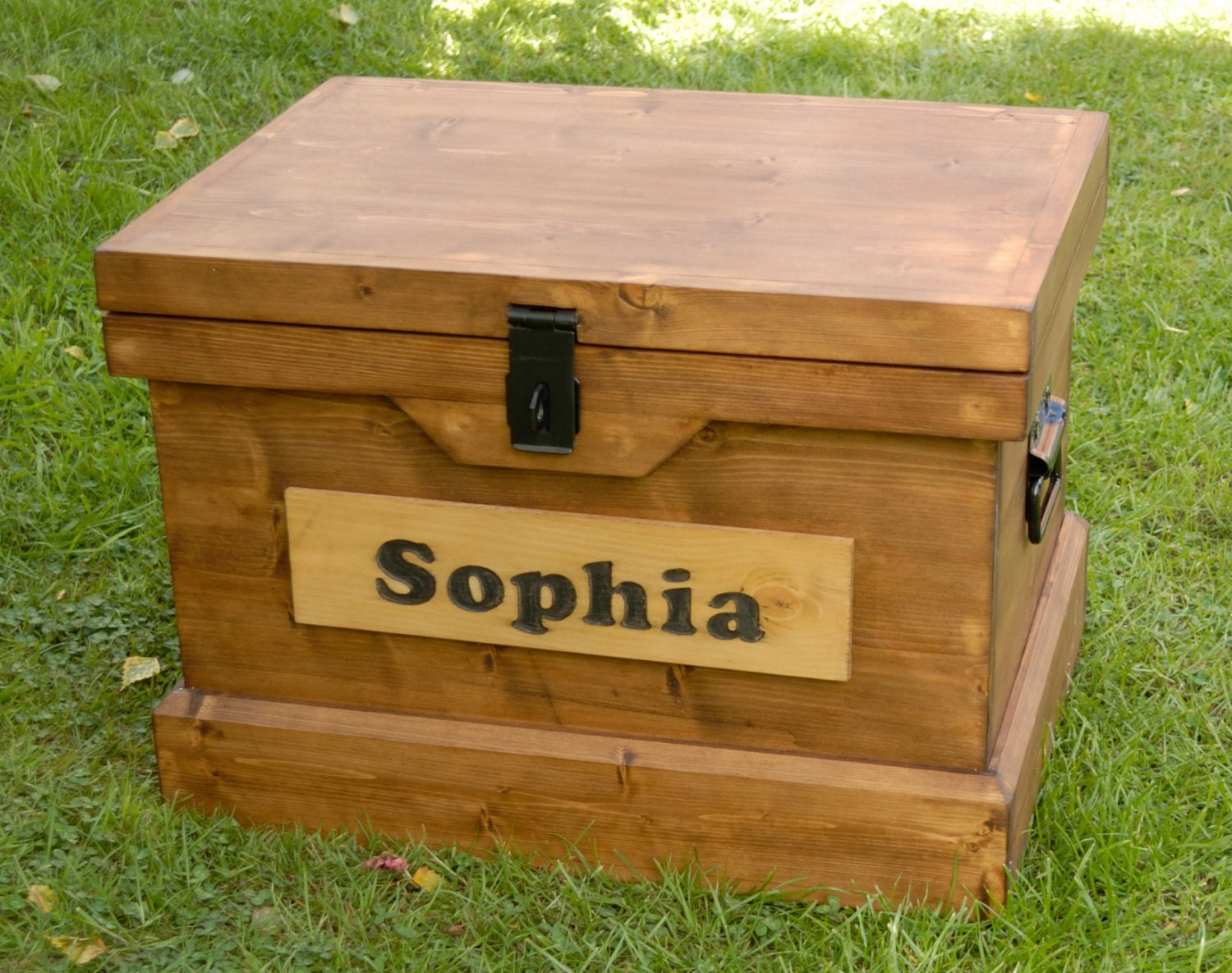 Wood Toy Boxes Or Chests ~ Solid wooden toy box childrens name storage chest seat