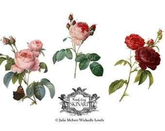 Three Fine Art Roses,  Vintage Fine Art Rose, floral tattoo, Body Art, Temporary Tattoo (includes 3 tattoos)