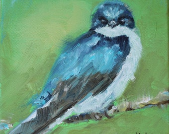 Tree Swallow 8x8 oil on canvas
