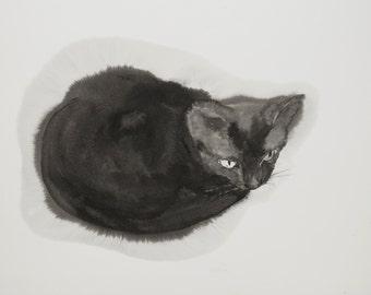 Black kitten - original ink drawing