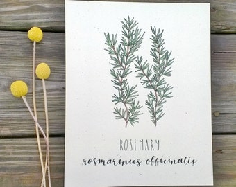 Kitchen Decor, Rosemary Wall Art, Rustic Herb Decor