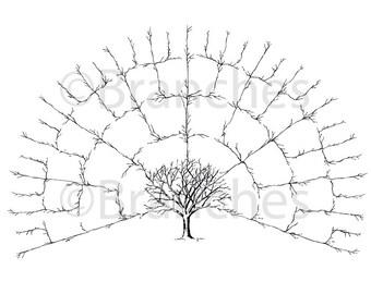 BLANK 5 Generation Family Tree Fan Chart { Digital File Only --16x20in }