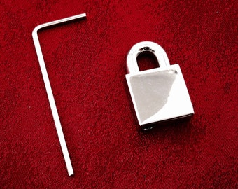 SMALL 316 Stainless Steel screw-lock padlock