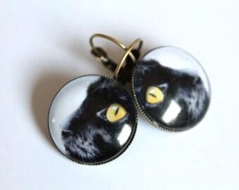 Cabochon earrings Cats