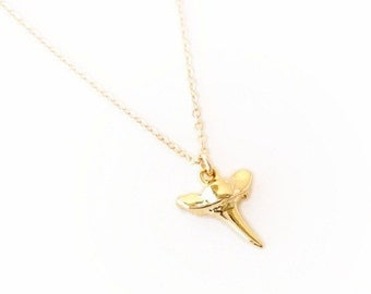 Tiny Shark Tooth Necklace / delicate shark tooth on 14k gold filled chain