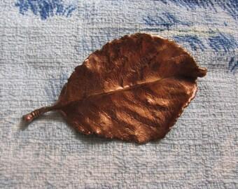 Large vintage copper detailed beech leaf brooch